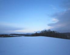 リセットの冬