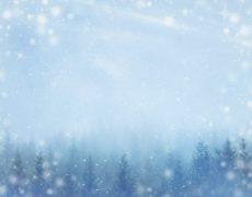北海道の冬あるある!雪予報は良く当たる?