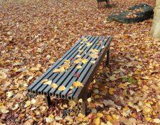 秋色で心を落ち着かせる